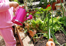 gardening-img